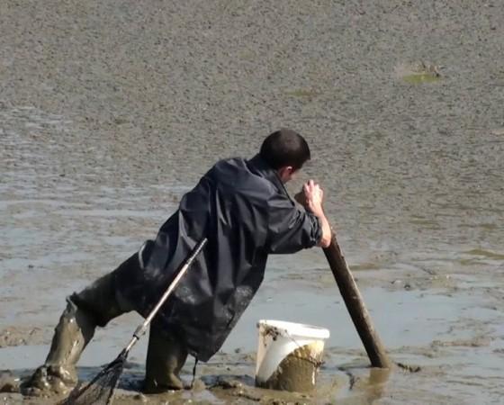 Le Jour des poissons