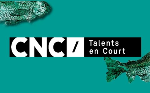 Talent en Court • Rencontre professionnelle/atelier